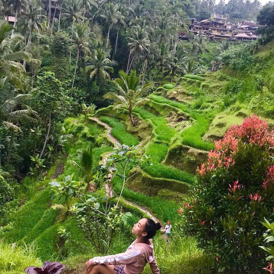 Objek Wisata Alam Di Bali 2019