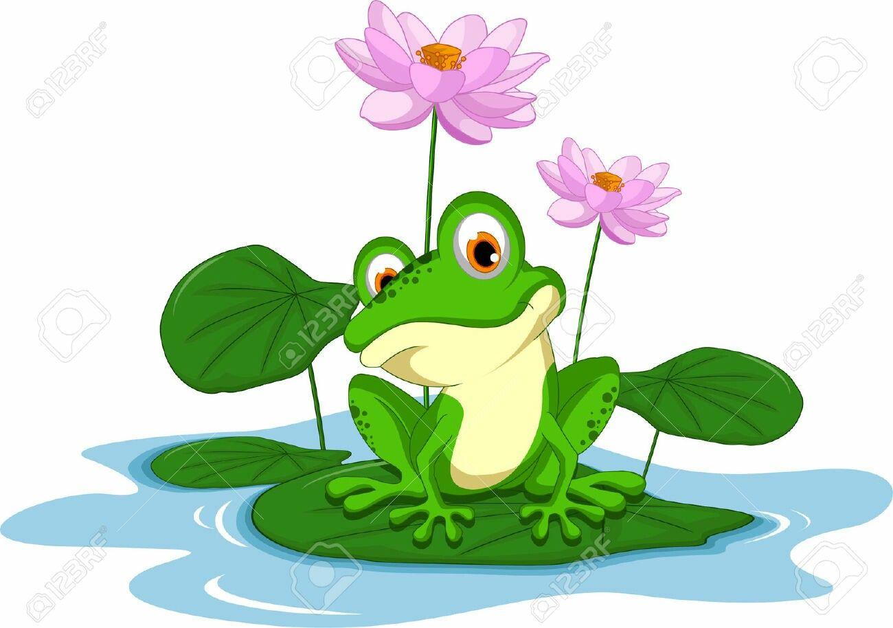 Frosche Frosch Illustration Frosch Zeichnung Niedliche Frosche