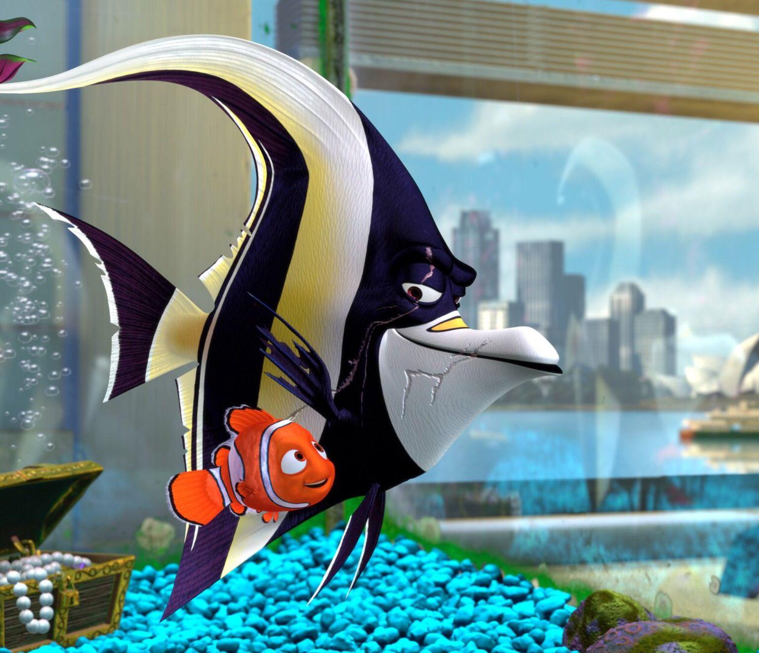 Gill's my fav | Finding nemo, Finding nemo fish  Walt Disney Pictures Presents A Pixar Animation Studios Film Finding Nemo