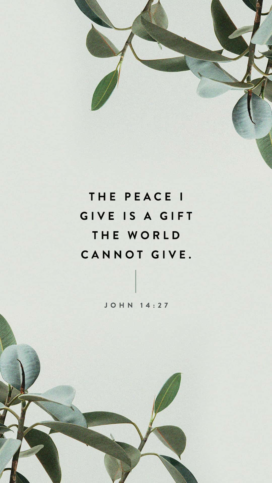 John 14:27 Peace I leave with you, my peace I give unto you: not as the world giveth, give I unto you. Let not your heart be troubled, neither let it be afraid.   King James Version (KJV)   Download The Bible App Now