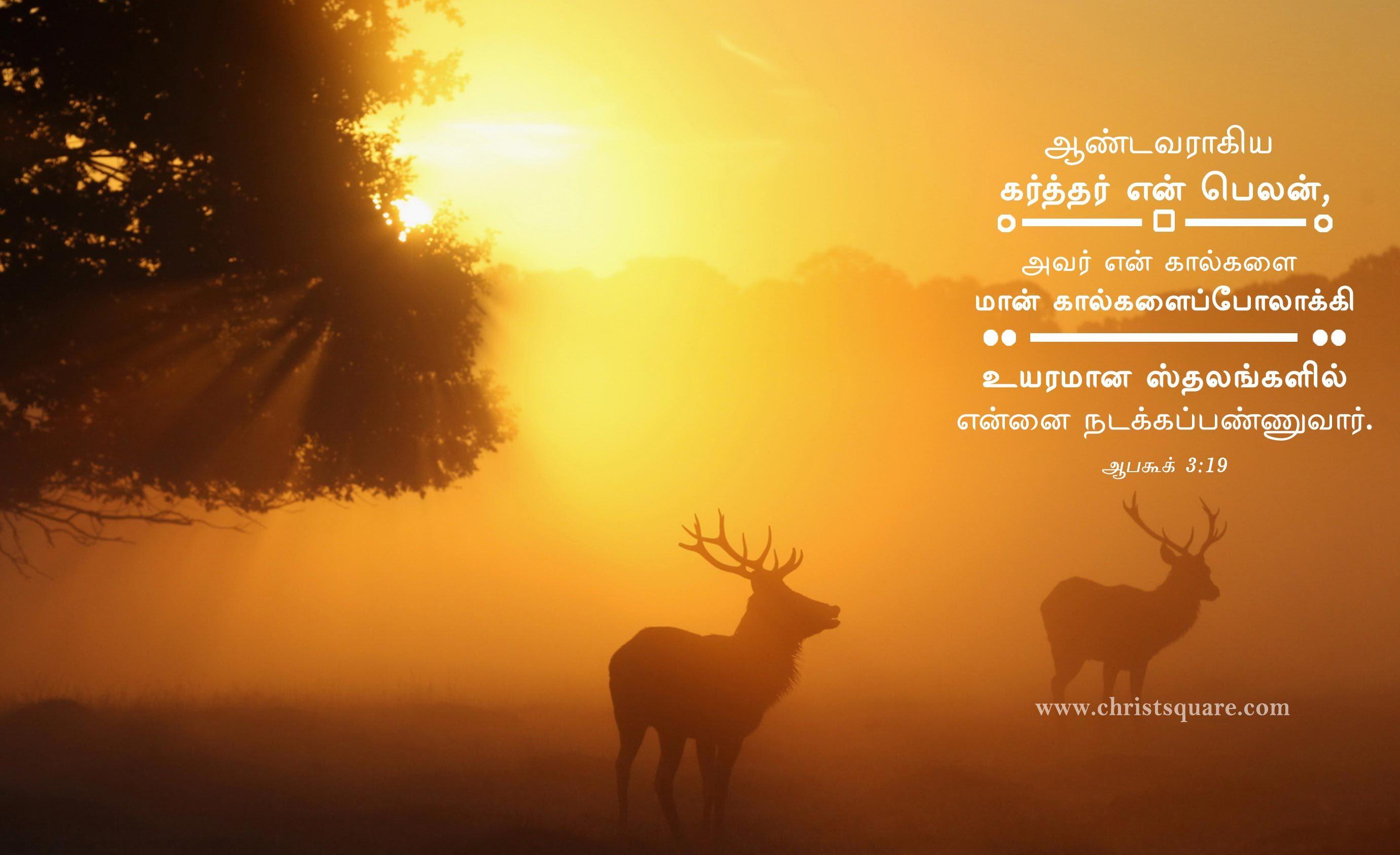 Tamil Christian Wallpaper HD Words Image Verses
