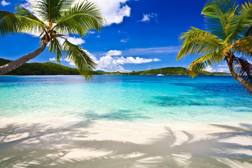 Tropical Beach Beach Naples Beach Vacation