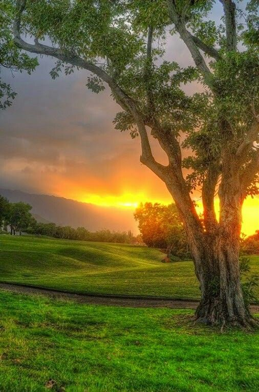 The Dawning Of A New Day Nature Photography Beautiful Sunrise Beautiful Landscapes