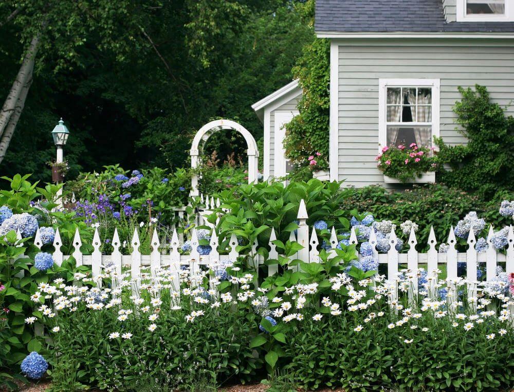 35 Hydrangea Garden Ideas Pictures