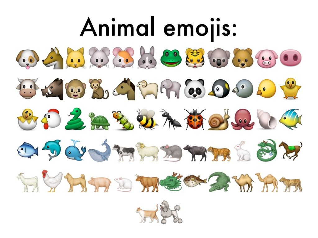animals emoji wallpaper - photo #11