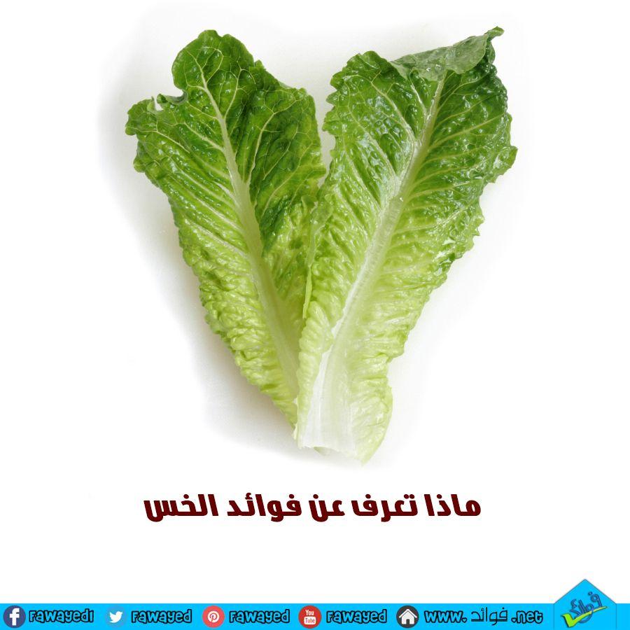 Pin On الخضروات