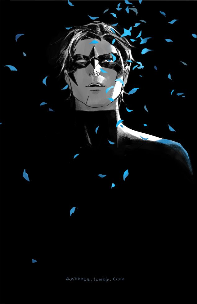 Nightwing by Axeeeee *