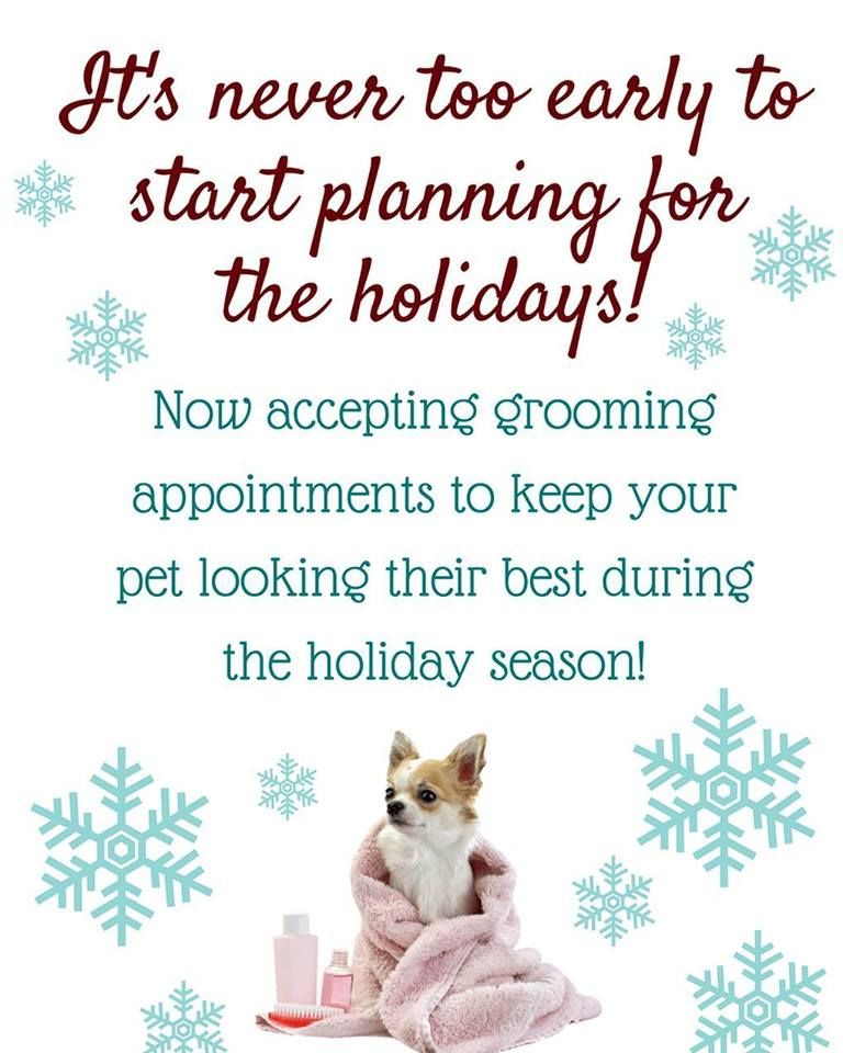 Set Up Your Appointments At Woof Gang Bakery Apopka Your Pet Pets Dog Grooming