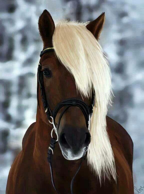 The post Chestnut horse cross stitch pattern, horse cross stitch, brown horse cross stitch, animal cross stitch, blonde horse cross stitch appeared first on Bestes Soziales Teilen.