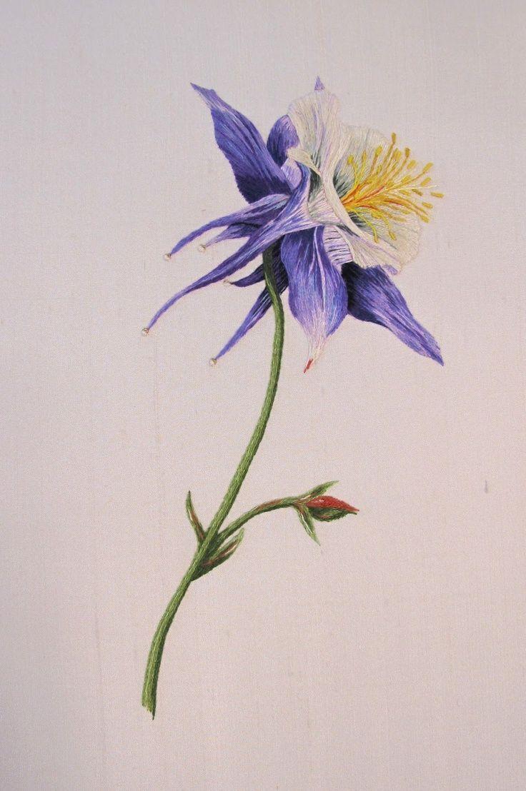 Image Result For Columbine Flower Illustration Columbines In 2018