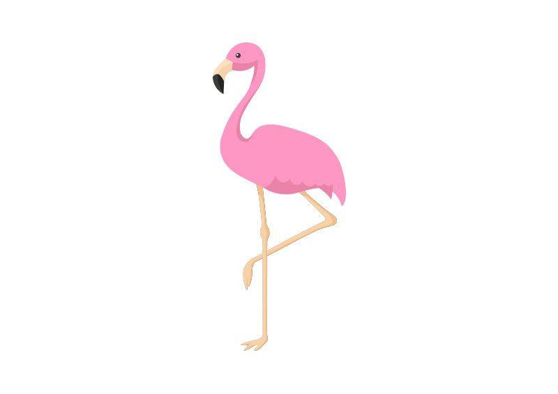 pink flamingo vector illustration   flamingo illustration, flamingo vector,  pink flamingos  pinterest