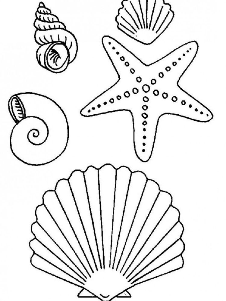 Starfish Coloring Pages Starfish Are Invertebrates That Live In The Sea With Postures Resembling Star Starfish Drawing Mermaid Coloring Pages Mermaid Coloring