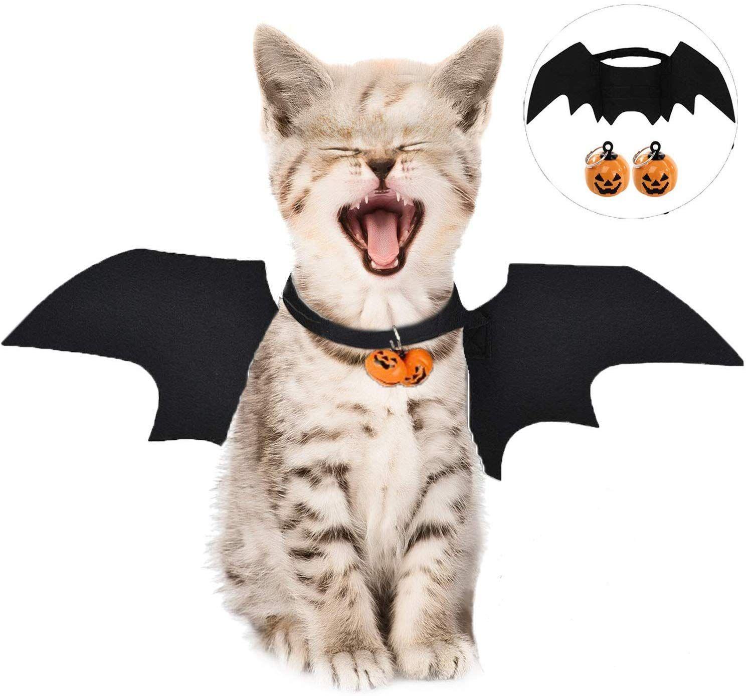 Witziges Halloweenkostum Fur Katzen Und Kleine Hunde Verkleide Deine Katze An Halloween Als Witzige Fledermaus Das Haus In 2020 Kostum Katze Katzen Kleidung Haustier