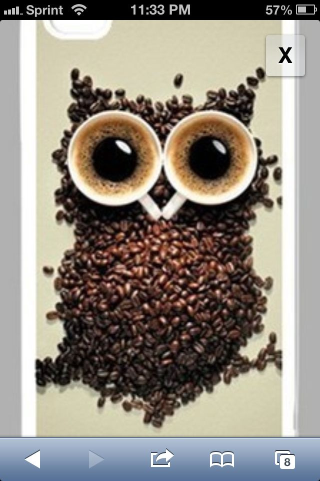Two things I love...coffee beans made into an owl!