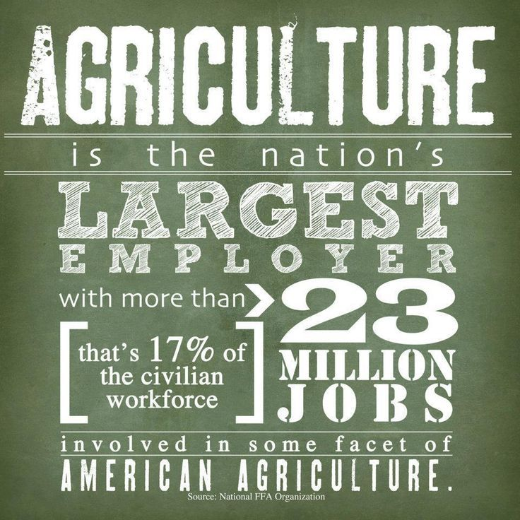 Agriculture One of the Most Useful College Majors Farm