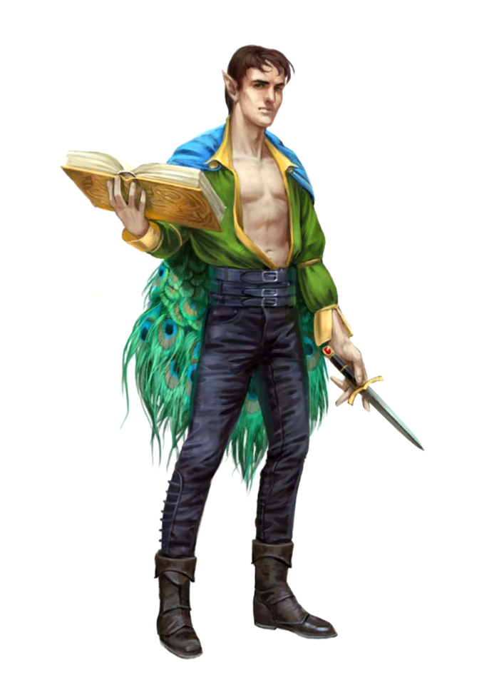 Young Male Elf Wizard Pathfinder PFRPG DND D&D 3.5 5E 5th