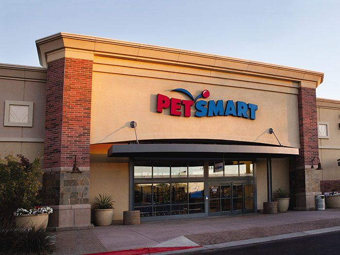 Worst Petsmart In History Livonia Mi Yelp Livonia Michigan Petsmart Detroit Pets Cats Kittens Dogs Puppy Animals Cute Dogs Dog Food Online Pets Pet Supermarket