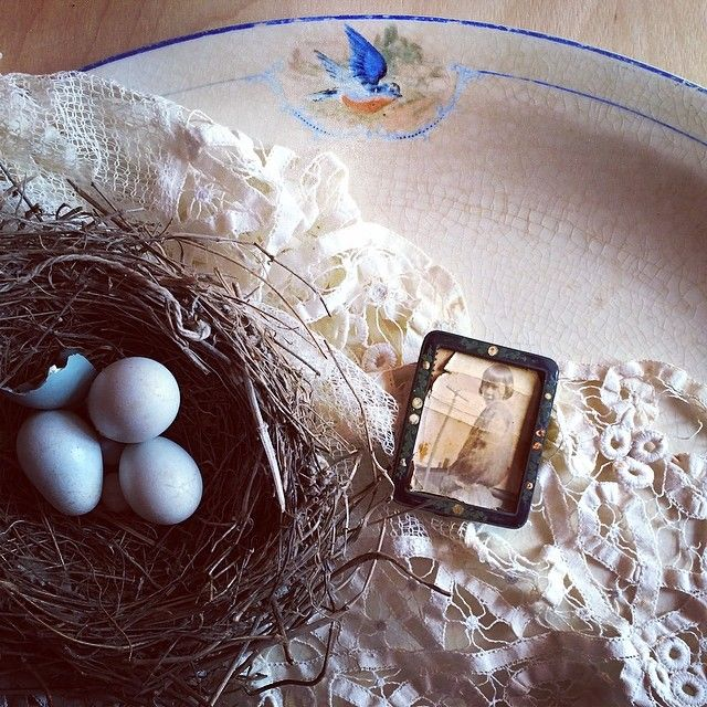 """""Stories, like people and butterflies and songbirds' eggs and human hearts and dreams, are also fragile things, made up of nothing stronger or more lasting than twenty-six letters and a handful of punctuation marks."" ~ Neil Gaiman {#bluebird #antique #china #photograph #lace #birds #nest #eggs #vignette #prettythings #vintage} Some of my favorite lovelies for spring"" Photo taken by @veraviola_vintage on Instagram, pinned via the InstaPin iOS App! http://www.instapinapp.com (03/22/2014)"