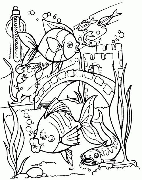 Tropical Fish Coloring Pages Awesome 2013