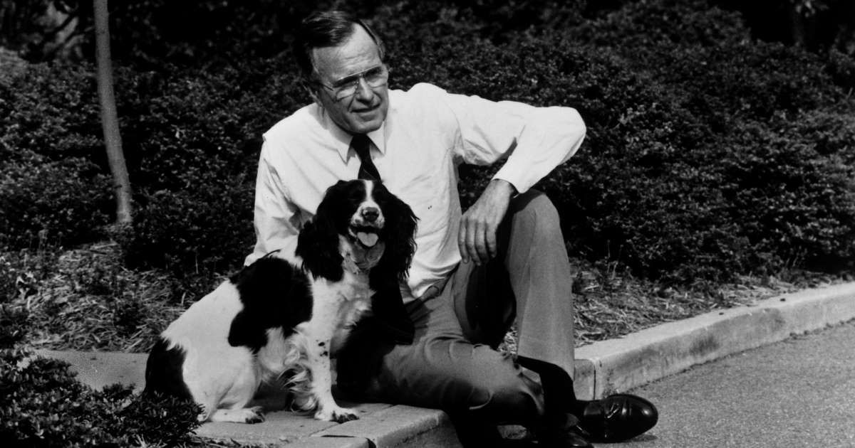 George H W Bush 41st President Of The United States