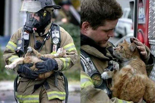 Humanity can be awesome.