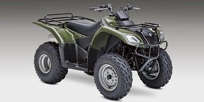 Ozark 250 Suzuki Atv Repair Manuals