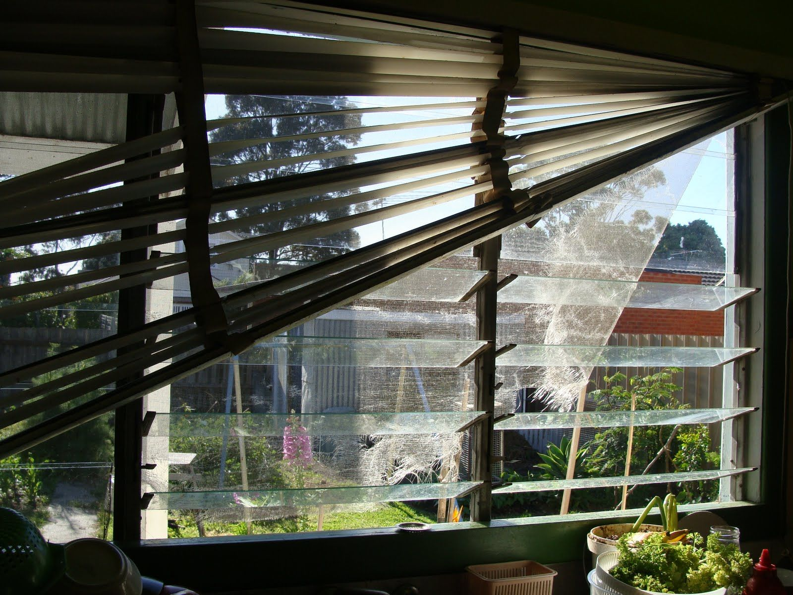 From The Nursery Cat Proofing Blinds House