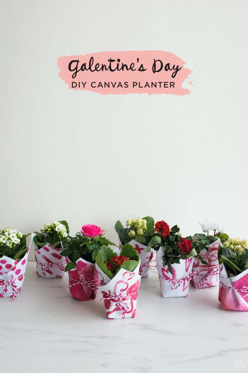 Diy galentines day gifts tiny adorable planters for your