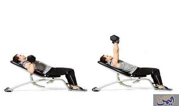 10 تمارين بالدمبل تساعدك على نحت عضلات بطنك Workout Muscle Fitness Exercise