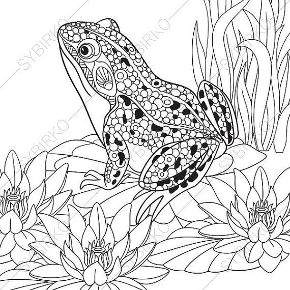 Adult Coloring Pages Frog Zentangle Doodle Coloring Book Page