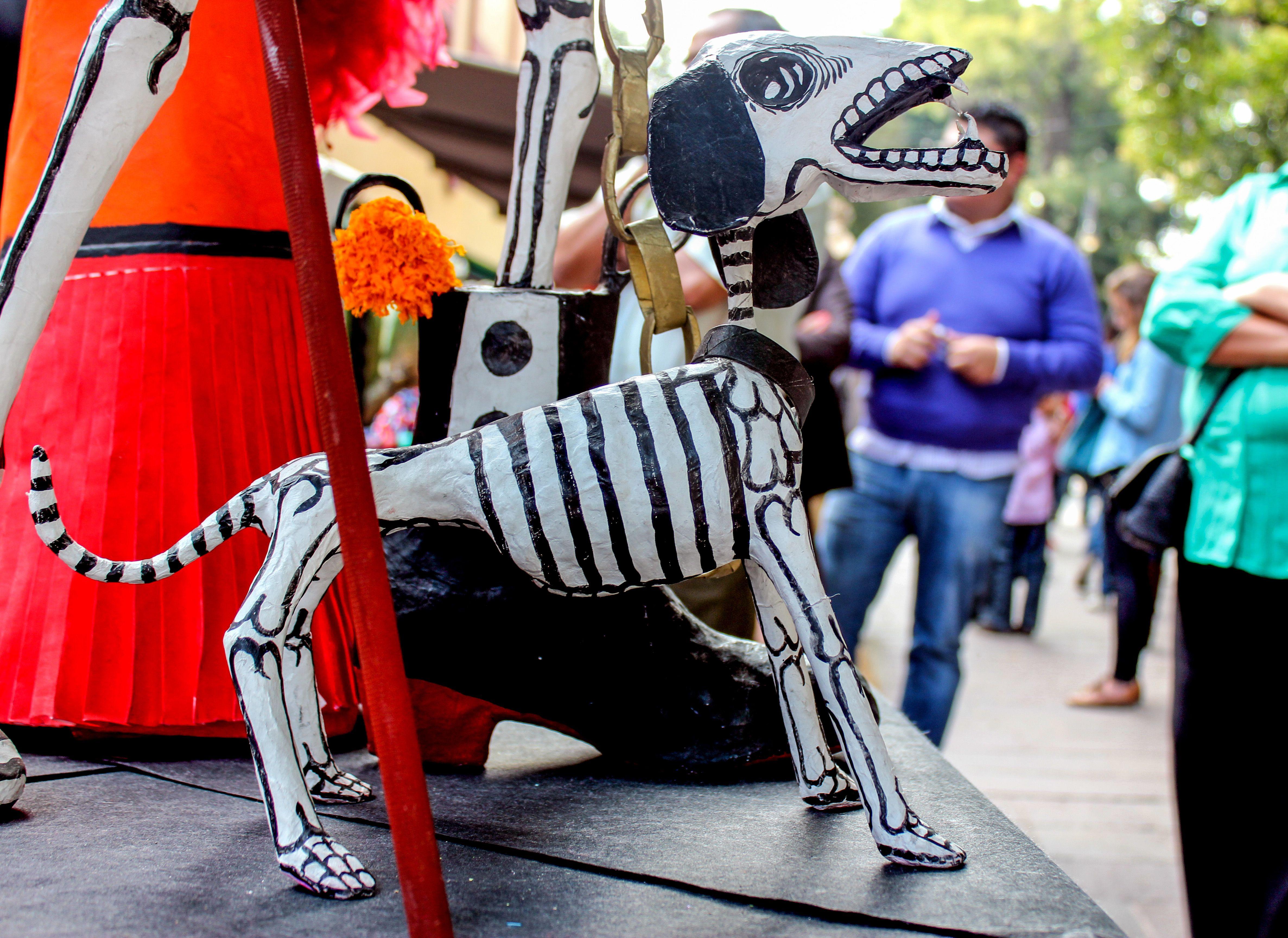 Perro, calaca, coyoacan, huesos, calavera, esqueleto, dia de muertos ...
