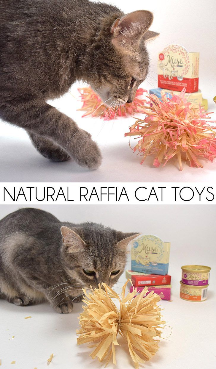 Natural Raffia Cat Toys Tutorial Cat Toys Handmade Cat Toys Diy Cat Toys