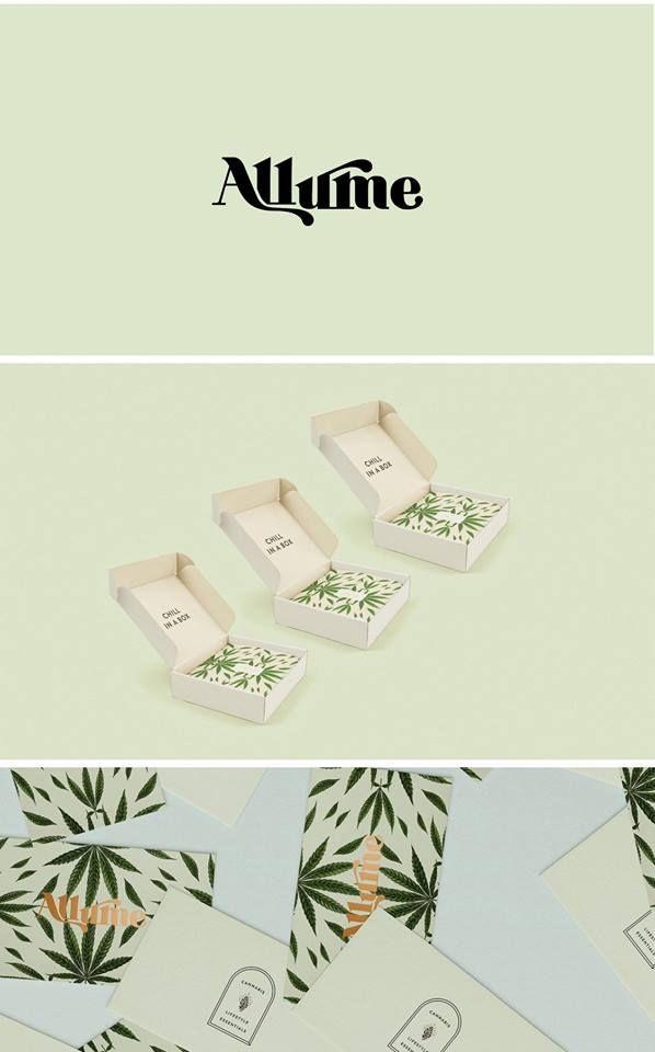 New In Portfolio Allume Branding Design Corporate Design