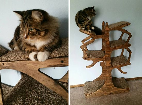 handmade cat tree from enchanted home designs stylish pussycats pinterest cat tree and cat. Black Bedroom Furniture Sets. Home Design Ideas