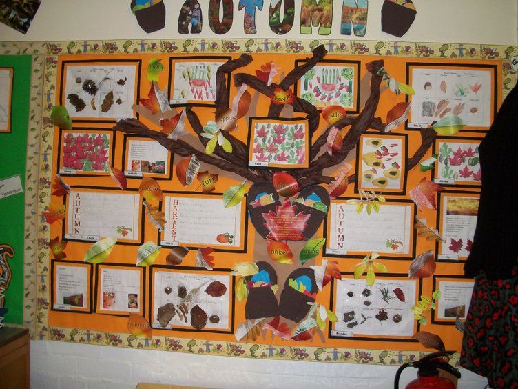 Classroom Display Ideas Nursery ~ Autumn and harvest display classroom class