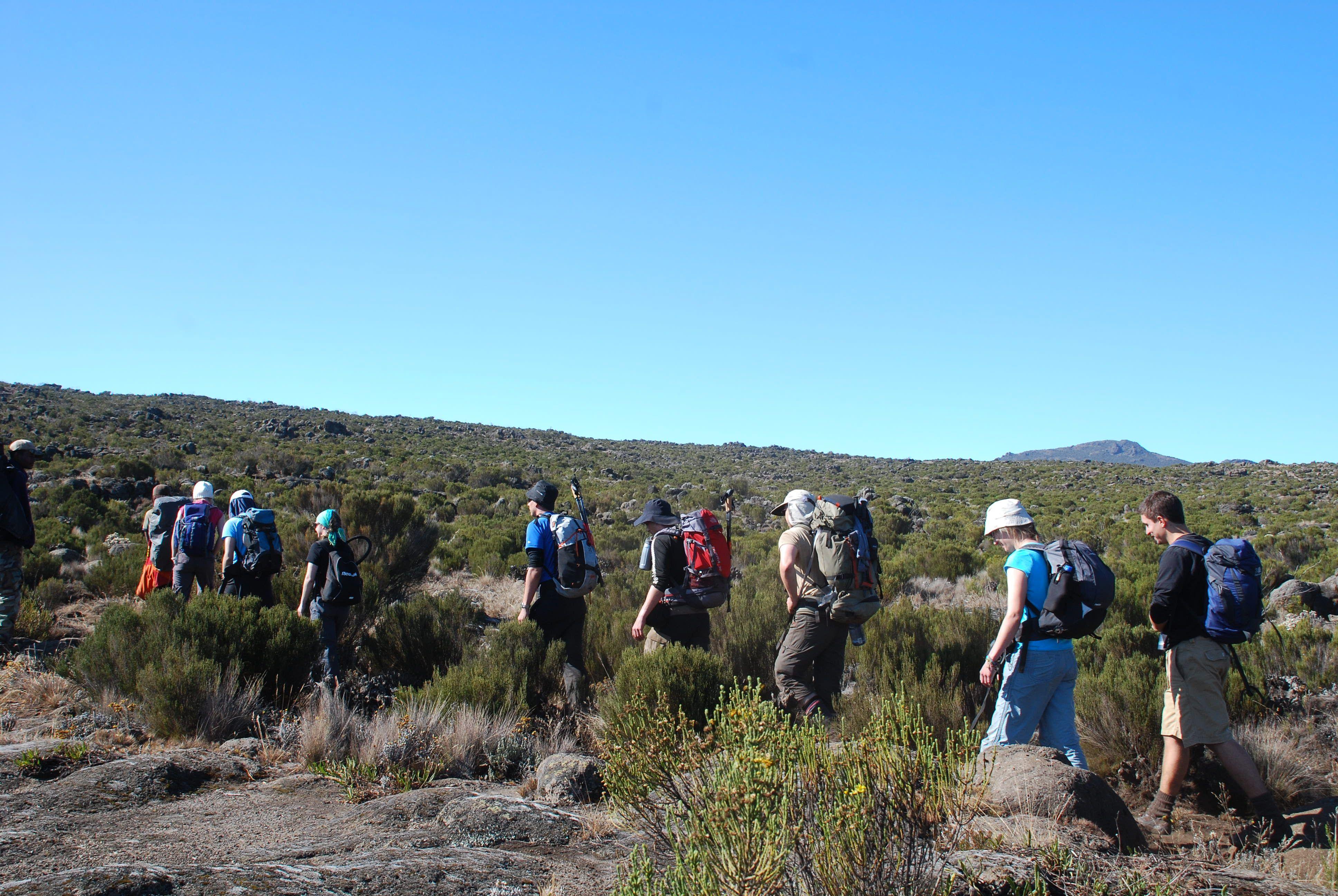 Setting off across the Shira Plateau, Day 2 Lemosho Route