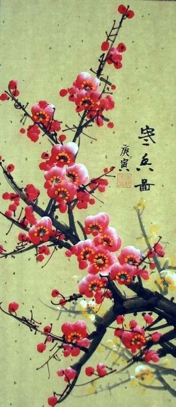 Cherry Blossom Cherry Blossom Drawing Cherry Blossom Art Blossoms Art