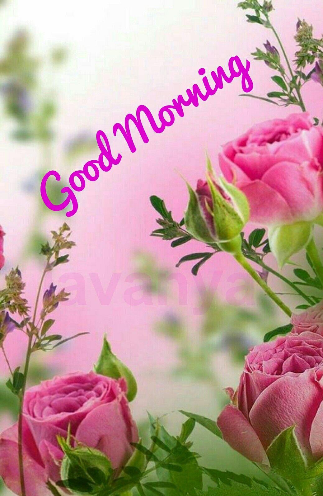 Pretty flowers image by Lavanya on Good Morning