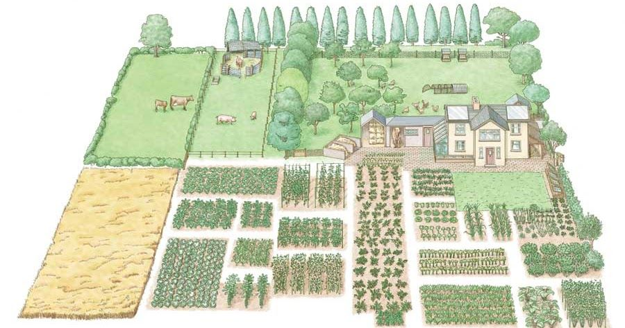 1 Acre Farm Layout Self Sufficient Homestead Farm Layout Acre