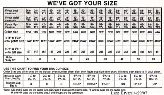 Lane bryant size chart plus sizes and talls they are a great place