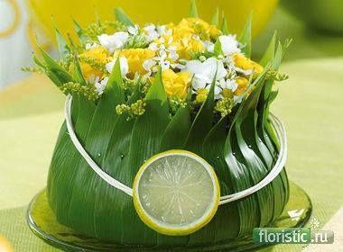 виды трансформации листьев и их использование - Страница 34 - Флористика: популярный флористический форум