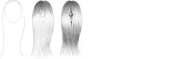 Long Straight Hair Drawing Tutorial How To Draw Hair Straight Hairstyles Long Straight Hair