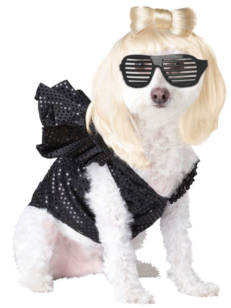 Dog Lady Gaga Costume Dog Halloween Costumes Pet Costumes Pet