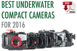 Best Underwater Compact Cameras of 2016 | Photography | Pinterest ...