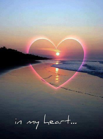 In My 3 Heart In Nature Love Heart Nature