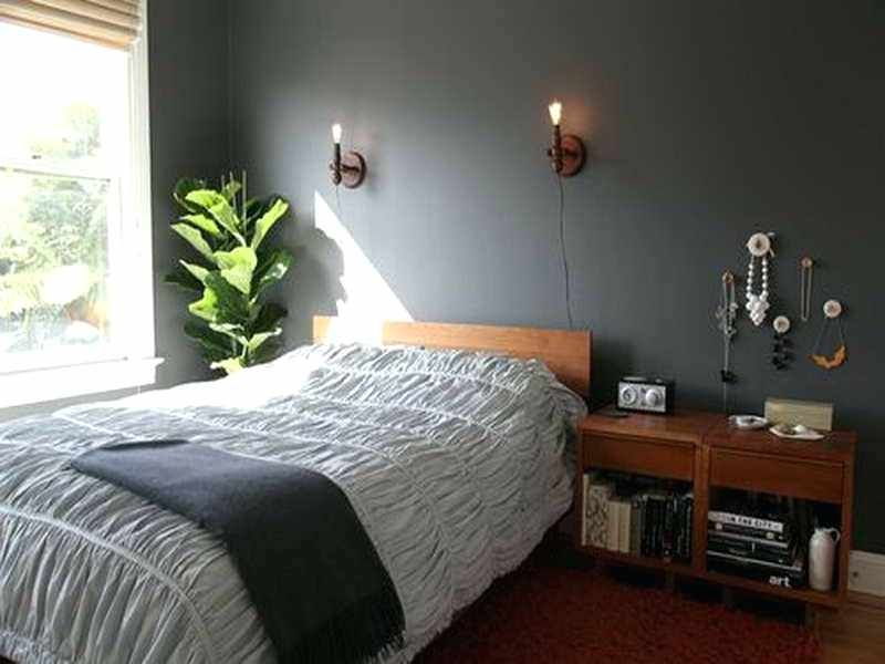 Paint Color Small Bedroom Cozy Photos Best Paint Colors For Small