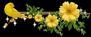 Flores e Barrinhas Para Divisão De Posts: Barrinhas para separação de posts  | Barro, Belas imagens, Flores