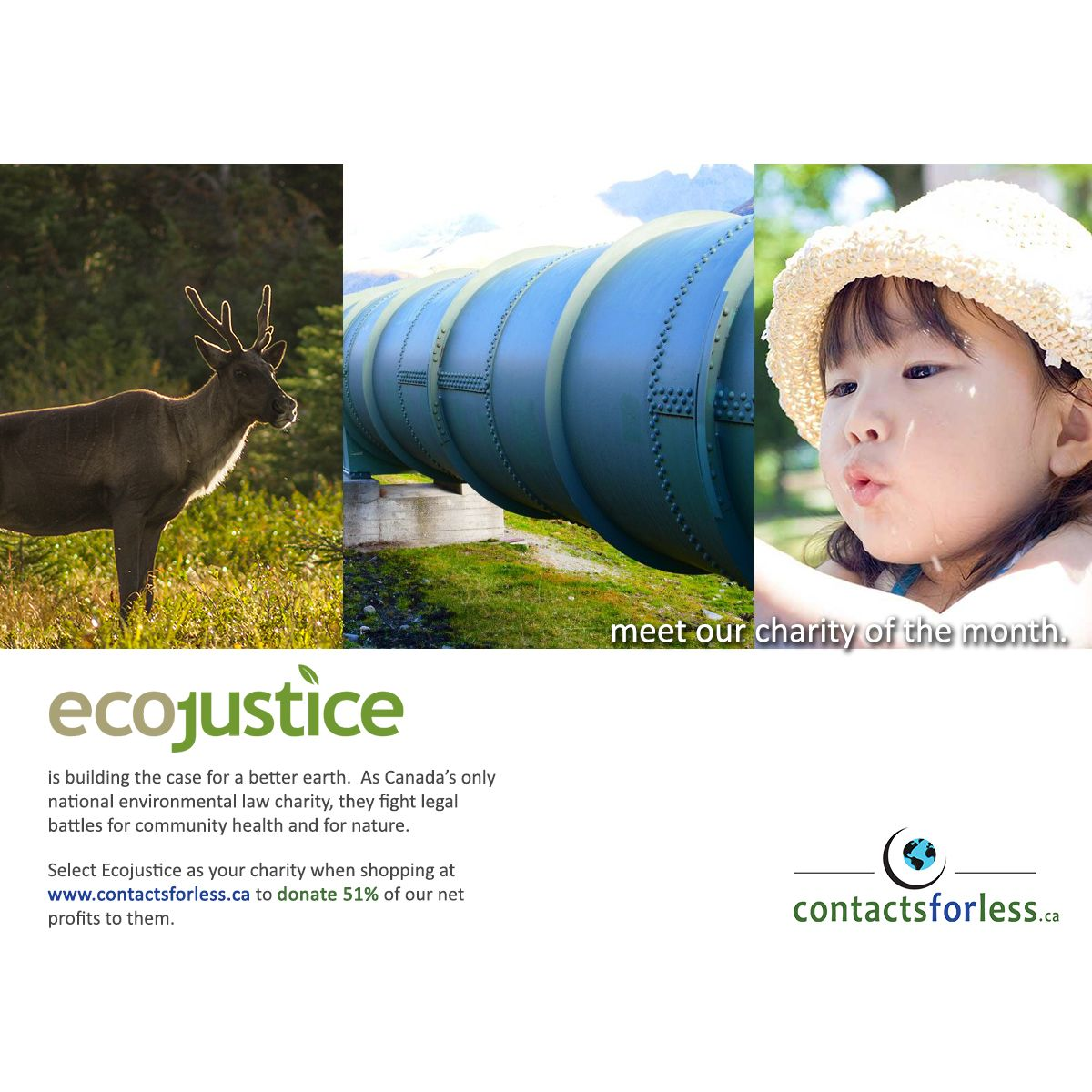 Ecojustice is building the case for a better earth. They