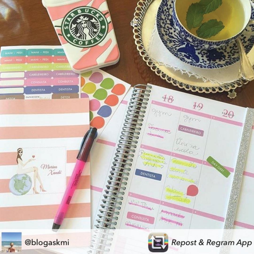 Domingo é dia de começar a planejar a semana... Compre online e receba em casa #dailyplanner #meudailyplanner #loveplanner #planejamento