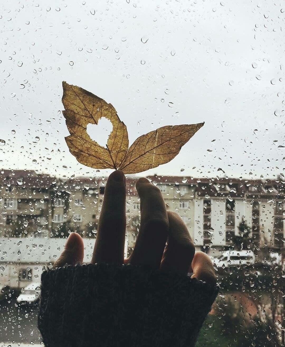 Winter Fotografi Seni Hari Hujan Fotografi Abstrak